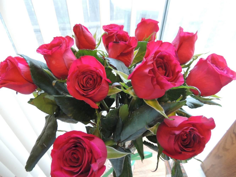 Способы укоренения роз из букета