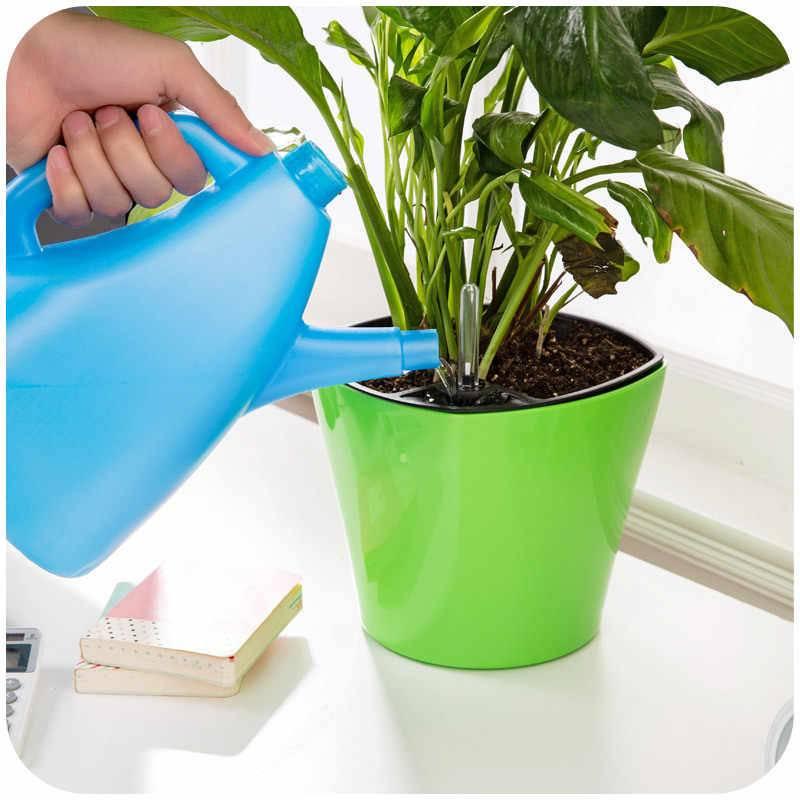 Как часто и как правильно поливать алоэ в домашних условиях