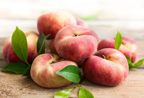 Лучшие сорта инжирного персика: посадка и уход