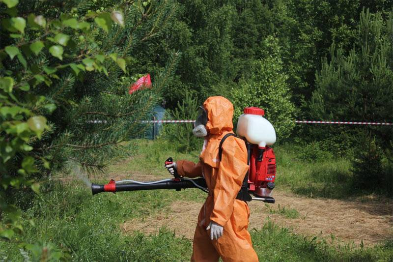 Обработка фунгицидами плодовых деревьев